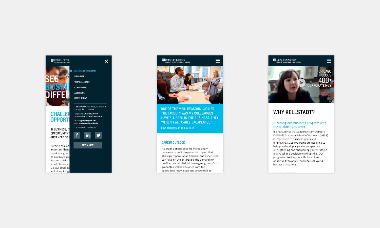 Multiple Inc DePaul University Kellstadt Web Viewbook 8